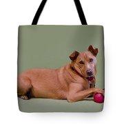 Foxy Tote Bag by Irina ArchAngelSkaya