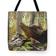 Foxy Stump Tote Bag