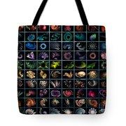 Fractal Diversity Tote Bag
