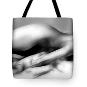 Fractal Nude 4933 Tote Bag