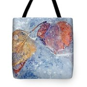 Fractured Seasons Tote Bag