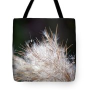 Fragile Seeds Tote Bag
