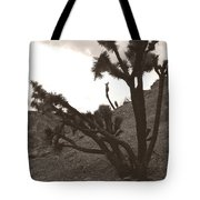 Framed By The Branches Tote Bag