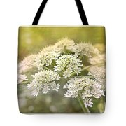 Framed Cow Parsley Tote Bag