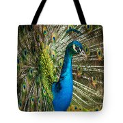 Framed In Feathers Tote Bag