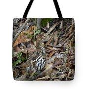 Framed Rugr Tote Bag