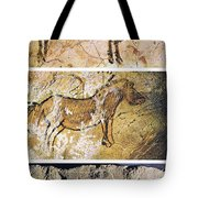 France And Spain: Cave Art Tote Bag