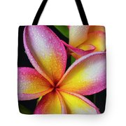 Frangipani After The Rain Tote Bag