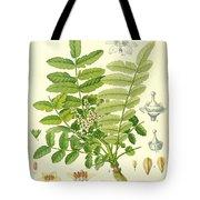 Frankincense Tote Bag