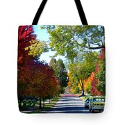 Franklin Street Liberty Tote Bag