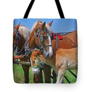 Franklinville Plowfest 1417b Tote Bag
