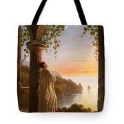 Franz Ludwig Catel  A Monk Meditating In A Cloister Tote Bag
