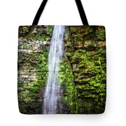 Free Fall Tote Bag by William Norton
