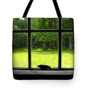 Freedom Awaits Me Tote Bag