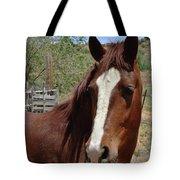 Freedom Horse Tote Bag