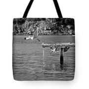 Freedom Is A Seagull Name Black And White Tote Bag