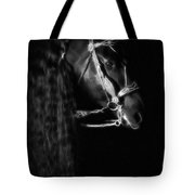 Freisian Shadow Tote Bag