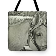 French Braided Gray Tote Bag