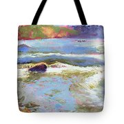 French Broad Rver Overflowing Tote Bag