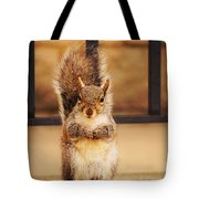 French Fry Eating Squirrel2 Tote Bag
