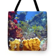 French Reef 1 Tote Bag