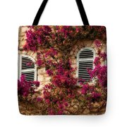 French Windows Tote Bag