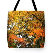 Fresco Autumn Diptych Right Tote Bag
