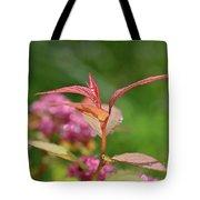 Fresh Colors Of Summer Tote Bag
