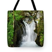 Fresh Green Forest In Spring At Lepenica River Gorge At Sunikov  Tote Bag