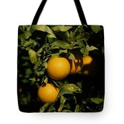 Fresh Oranges Tote Bag