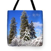 Fresh Winter Solitude Tote Bag