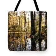 Friday Hill Reflections 1 Tote Bag