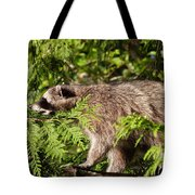 Friday May 20 2016 Tote Bag