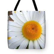 Fried Eggs Tote Bag