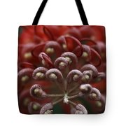 Friendly Foe Tote Bag