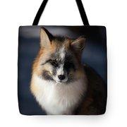 Friendly Fox Tote Bag