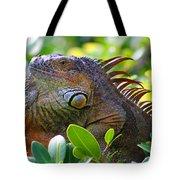 Friendly Iguana Tote Bag