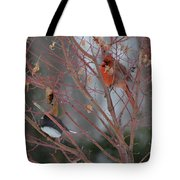 Friends Of A Feather Tote Bag