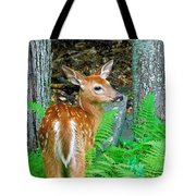 Friends Of The Forest  Tote Bag