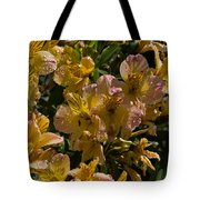 Friendship Yellow Alstroemeira Tote Bag