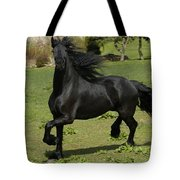 Friesian Horse In Galop Tote Bag by Michael Mogensen