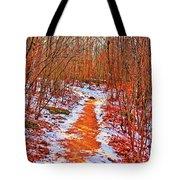 Frigid Walk Tote Bag
