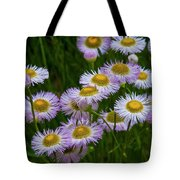 Sometimes It's Complicated Tote Bag