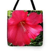 Frilly Red Hibiscus Tote Bag