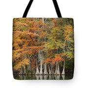 Frio River #5 2am-27571 Tote Bag