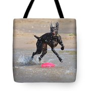 Frisbee On The Beach Tote Bag