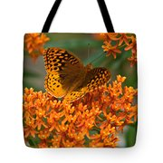 Frittalary And Milkweed Tote Bag