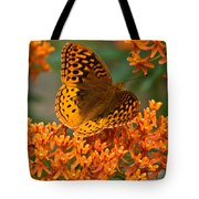 Frittalary Milkweed And Life Tote Bag