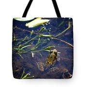 Frog 5 Tote Bag