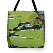 Frog Amongst The Lilypads Tote Bag